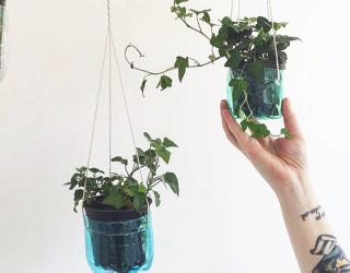 Costruire un giardino verticale in casa utilizzando le bottiglie di plastica donnad - Giardino verticale in casa ...