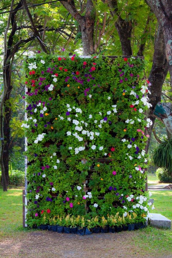 arredo verticale con piante e fiori donnad