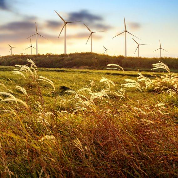 Che cosa significa sognare il vento   DonnaD