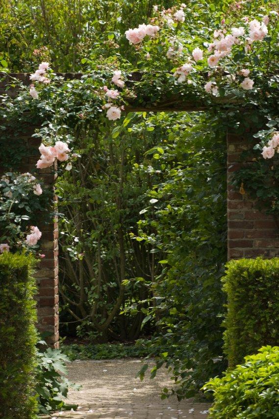 il giardino decorativo verticale donnad