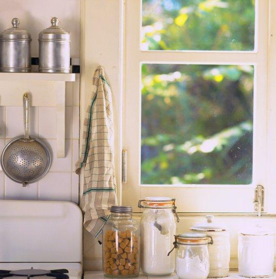 Stop a scarafaggi e formiche donnad - Formiche in cucina ...