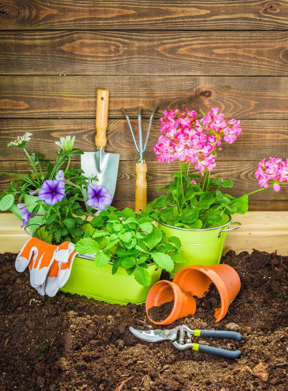 giardino fai da te idee e consigli donnad