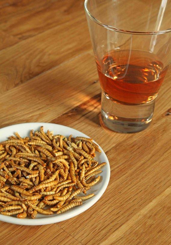 Norma di unintestazione su un lyambliya - Che bere da vermi a gv