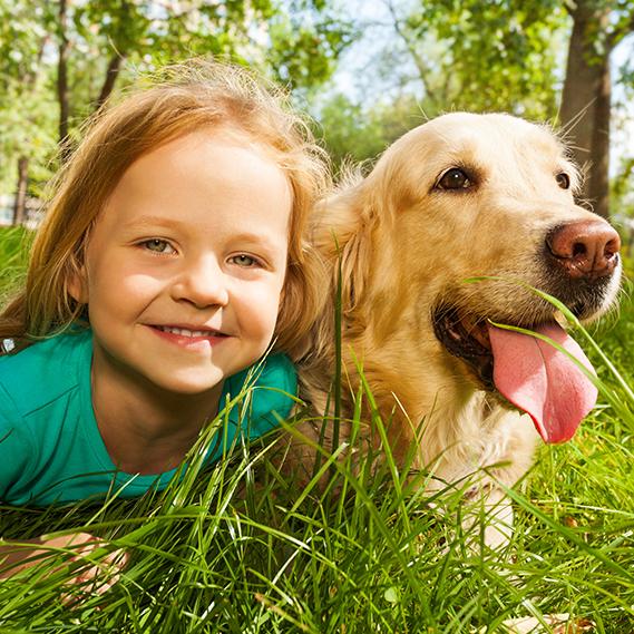 Avere un animale in casa tutti i benefici per i nostri for Avere un costo costruito casa