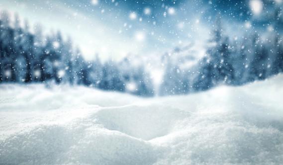Citazioni Sulla Neve Da Romanzi Donnad