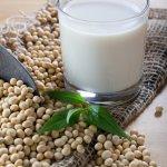 latte vegetale varietà scelta fatto in casa