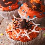 cupcake muffin dolcetti halloween ragnatela mostri