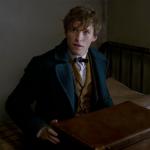 Harry Potter: 5 cose che non sapevi sulla saga e i suoi prequel