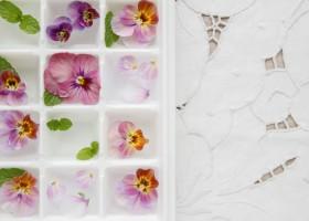 Idee per l'aperitivo estivo, come fare i cubetti di ghiaccio con fiori e frutta