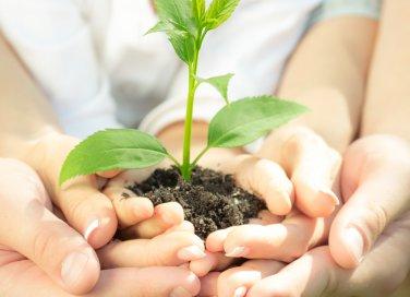 giornata della terra-ecologia-ambiente-pianta-crescita-mani