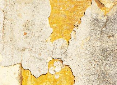 muratura intonaco deumidificatore muffa umidità pareti eliminare casa
