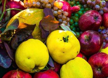 frutta fresca stagione consigli proprietà qualità