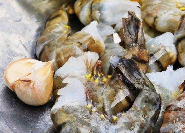 pesce varietà allevato selvatico surgelato consigli benefici proprietà
