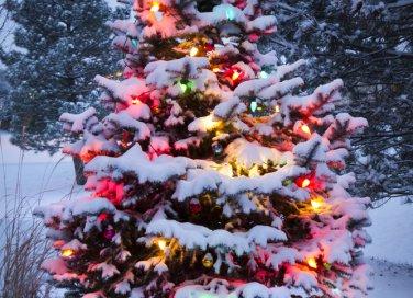 sognare addobbi natalizi