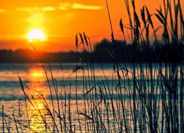 Lago di Bolsena: cosa vedere e cosa fare