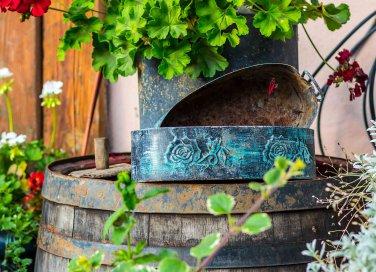 Come coltivare la stevia in casa donnad for Fioriere fai da te