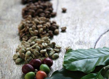 rimedi casalinghi piante concimi naturali