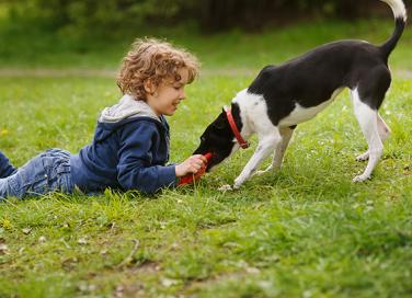 I bambini e la paura dei cani: come superarla