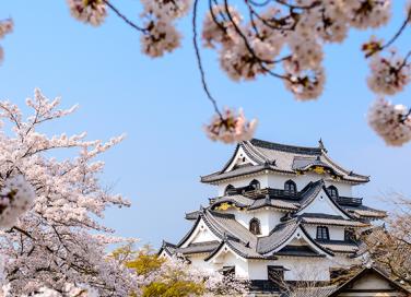 10 cose sulla cultura giapponese che ti incuriosiranno