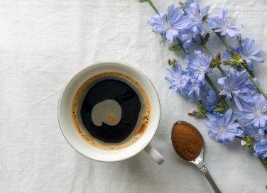 caffè di cicoria, proprietà benefiche, come si prepara