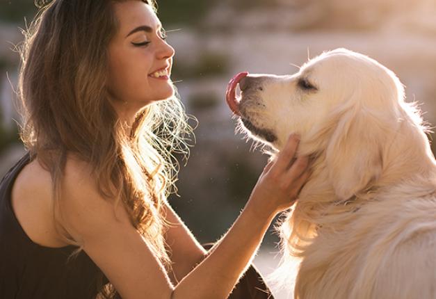 4 consigli per preparare una vacanza pet-friendly