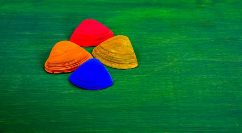 Come colorare le conchiglie per creazioni fai da te