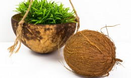 riciclare gusci noci di cocco, lavoretti con noce di cocco, utilizzare gusci noci