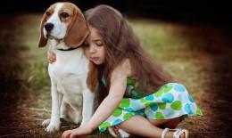 cani taglia media bambini
