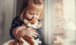razze gatti per bambini