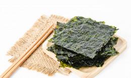 alga nori proprietà