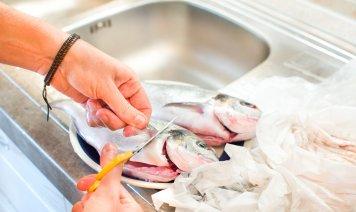 come pulire pesce appena pescato, pulire pesce