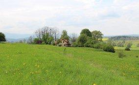campagna verde pace tranquillità salubre benessere