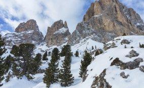 montagna-bosco-neve-inverno-vacanze