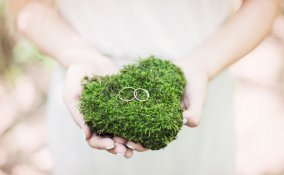 matrimonio verde greenery