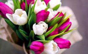 fiori festa donna, regali festa donna