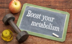 metabolismo, linea