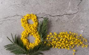 lavoretti festa della donna, decoupage con mimosa, decoupage fiori secchi