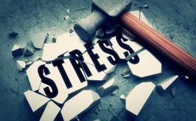 stress e natura