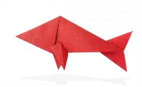 origami facilissimi pesce