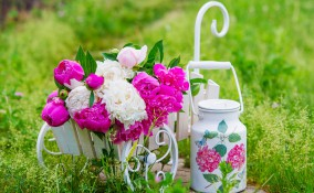decoupage giardino, idee decoupage, idee giardino