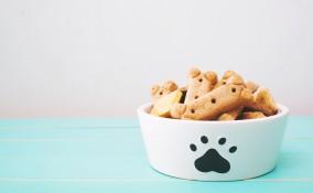 biscotti mela cani