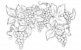 disegni da ricamare a punto catenella autunno, disegni autunno, ricamo autunno