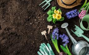 pulire attrezzi giardino