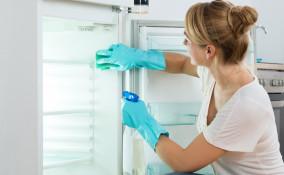 pulizia, frigo, aceto