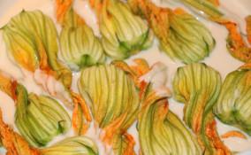 fiori zucca vegani