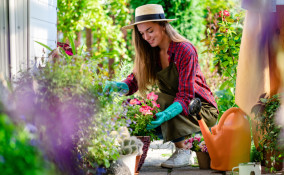 creare giardino fai da te errori, giardino fai da te, come creare giardino, creare giardino fai da te