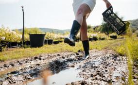 come togliere fango giardino, fango giardino