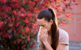 allergia al polline