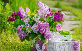 idee per abbellire giardino fai da te, arredo giardino fai da te, decoupage giardino