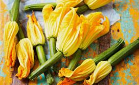 Ricetta con fiori di zucca